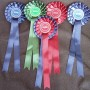 2 tier special rosettes