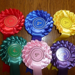 2 tier stock 1st to 6th (2) website